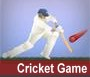 Igre: Cricket game